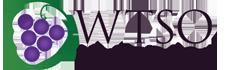 WTSO Logo