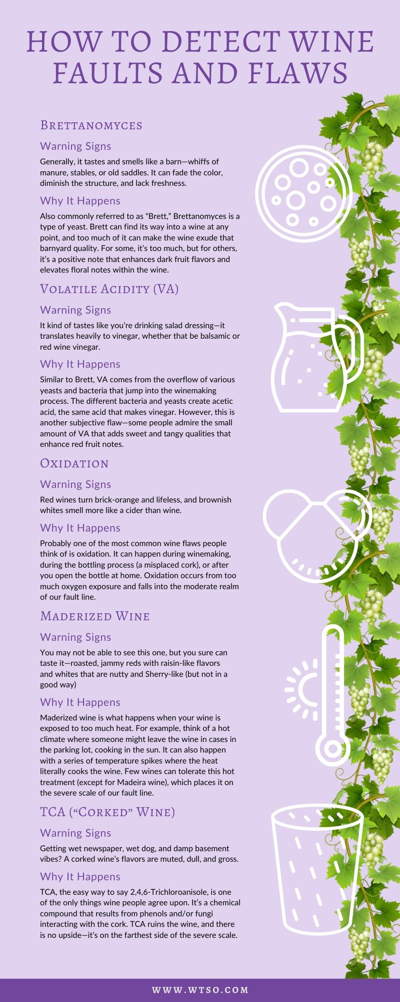 Infographic: How to Detect Wine Faults and Flaws