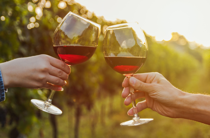 The Differences Between Old World and New World Wines