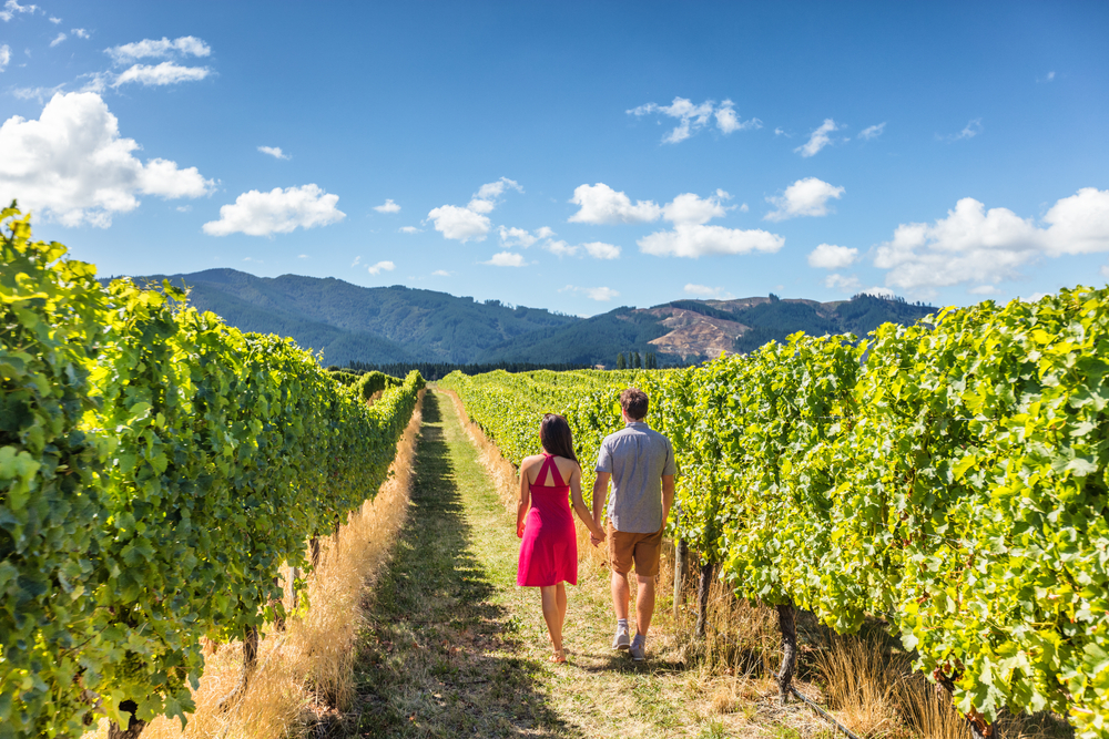 Top 5 Reasons to Take A Classic California Winery Road Trip